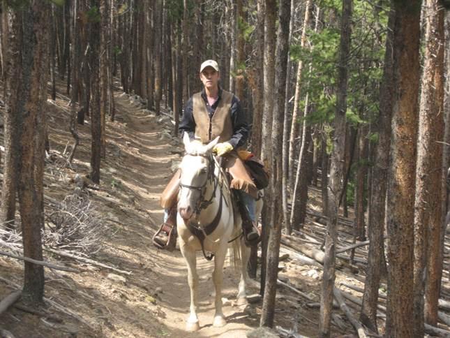 Madline Horsemanship Clinics