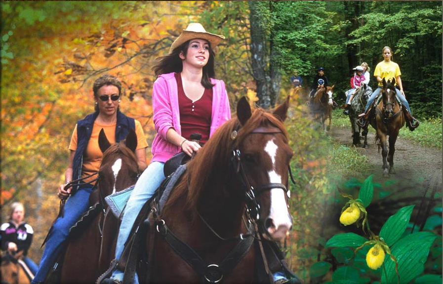 Outback Trail Rides, Inc.
